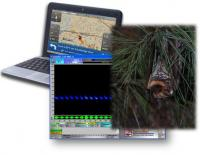 Laptops for Bat Monitoring